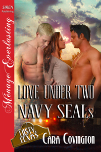 Love Under Two Navy Seals